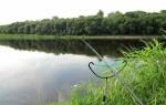 Фидерная оснастка для ловли на течении в реках