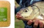 Как приготовить пшено для рыбалки на леща