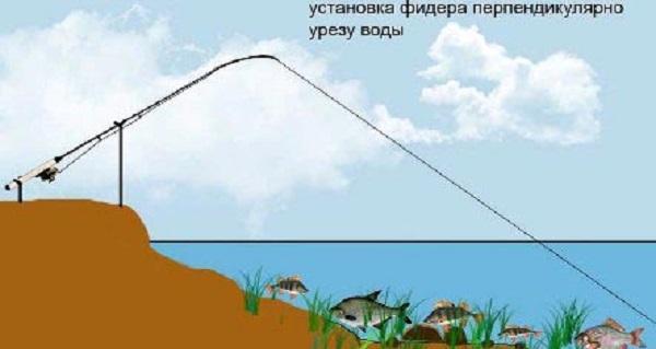 Вертикальное положение
