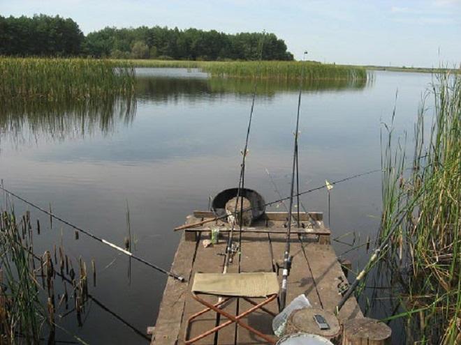 Фидер на озере и пруду