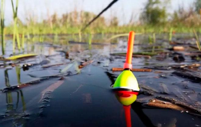 Поплавок для рыбалки на карася